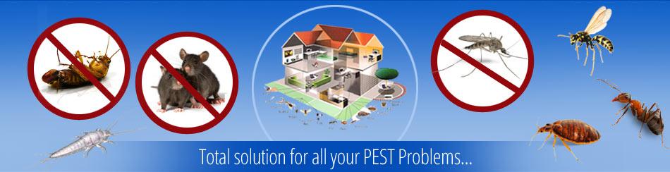 pest-control-services-dhaka-bangladesh